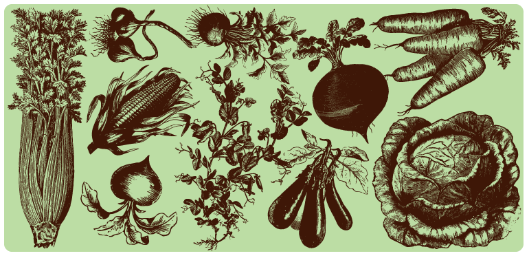 drawings of vegetables