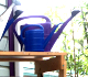 watering cans at the westside garden center